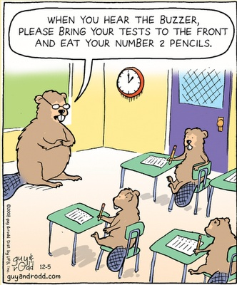 TestingBeavers